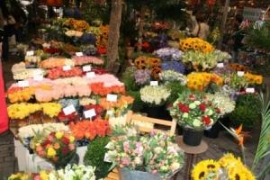 Der Amsterdamer Blumenmarkt