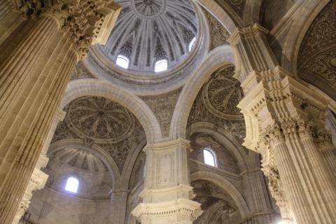 Cathedral Santa María de la Encarnación  / Granada