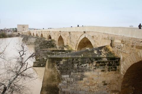 Puente Romano in Cordoba