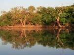 Bootsfahrt am Yellow Water River / Kakadu NP
