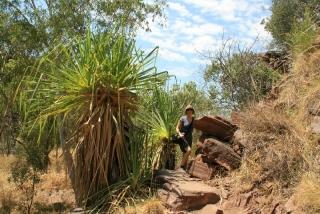 Wanderung im Keep River National Park