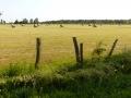 landschaftliche Idylle bei Truchère