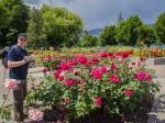 Rosengarten im Stadtpark von Kelowna