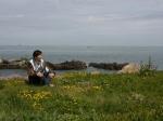 Küste vor Fort Clonque mit Frauenschuh und Grasnelken