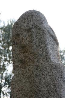 Menhir in der Ausgrabungsstätte Filitosa