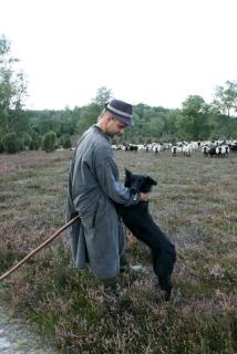 Schäfer mit Hund in der Ellerndorfer Wacholder Heide