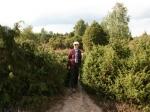 Wanderung in der Ellerndorfer Wacholder Heide