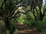 Wanderweg bei Rabaçal