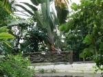 der tropische Bereich von Eden Project