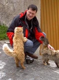 Katzenbelagerung