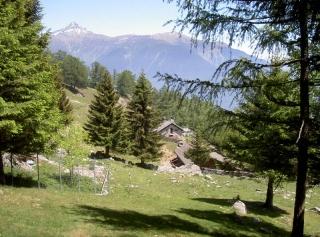 Wanderung Alpe Monda